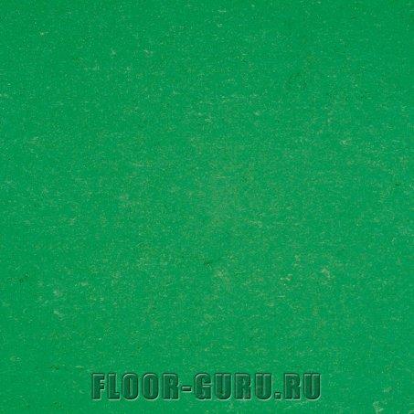 Armstrong Colorette LPX 131-006