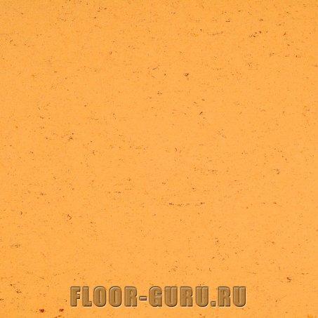 Armstrong Colorette LPX 131-073