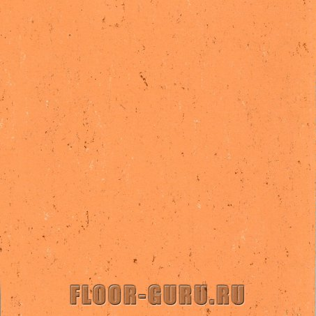 Armstrong Colorette LPX 131-078