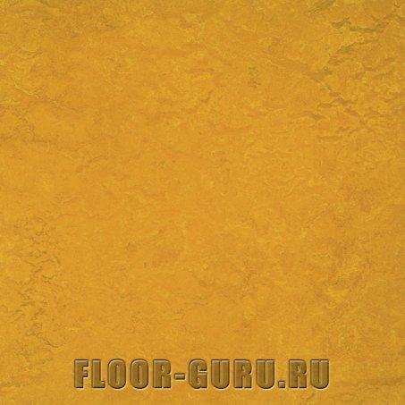 Forbo Marmoleum Decibel LR 312535