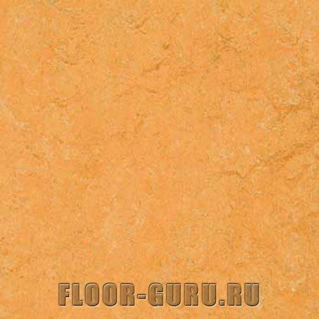 Forbo Marmoleum Fresco 3847