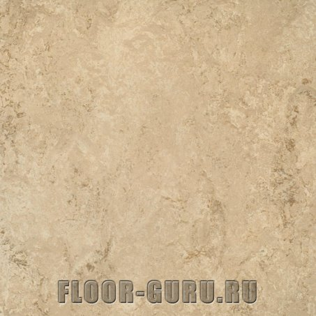 Forbo Marmoleum Real LR 2707