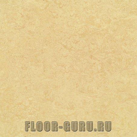 Forbo Marmoleum Real LR 2795