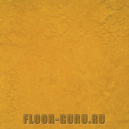 Forbo Marmoleum Real LR 3125