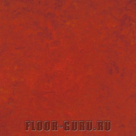 Forbo Marmoleum Real LR 3131