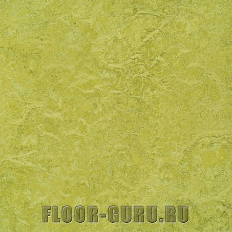 Forbo Marmoleum Real LR 3224