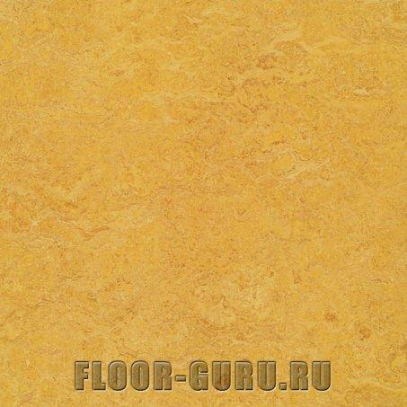 Forbo Marmoleum Real LR 3225