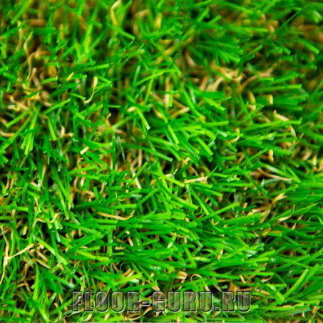 Oryzon Grass Magnolia Dragon