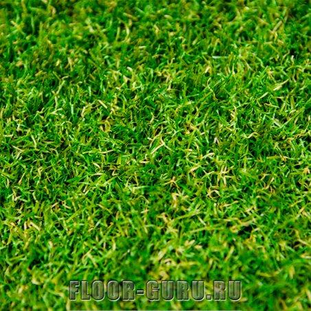 Oryzon Grass Riviera Avocado