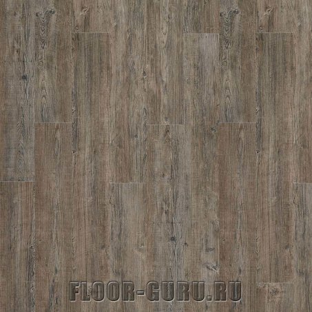IVC Moduleo Transform Wood Latin Pine 24868