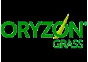 Oryzon Grass