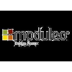 Виниловые полы Moduleo