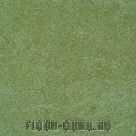 Forbo Marmoleum Decibel LR 322335