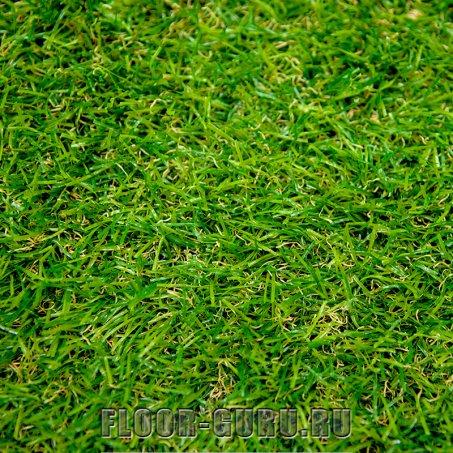 Oryzon Grass Astra Avocado