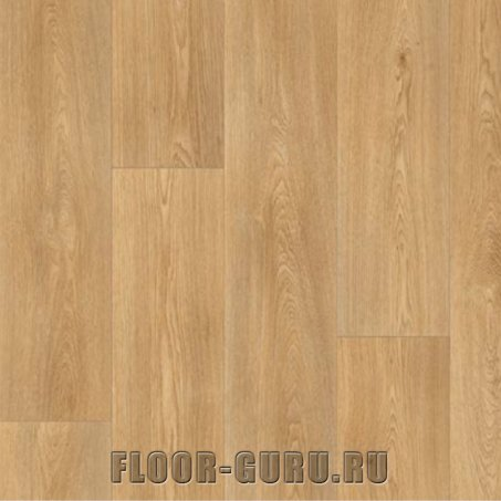 Ideal Stars Columbian Oak 236M