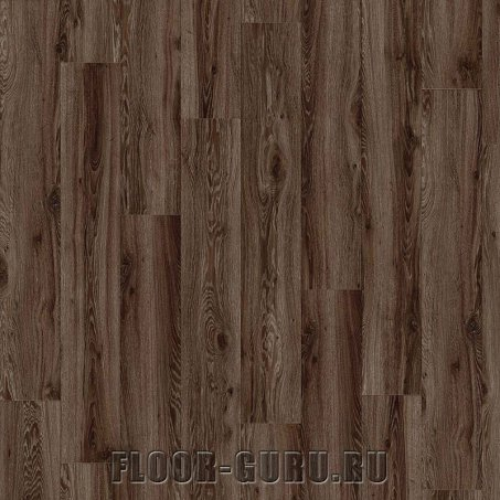 IVC Moduleo Transform Wood Blackjack Oak 22862