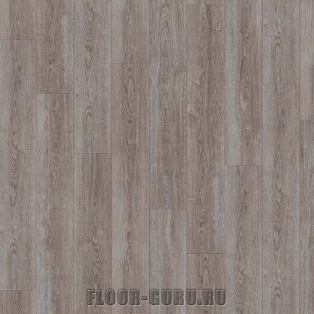 IVC Moduleo Transform Wood Verdon Oak 24117