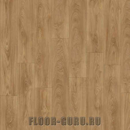 IVC Moduleo Impress Laurel Oak 51822