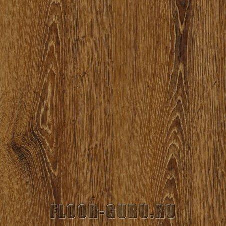 IVC Primero 22857 Evergreen Oak