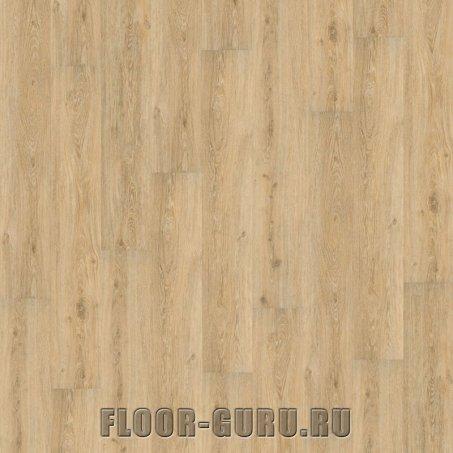 Wineo 600 Wood XL Victoria Oak Native Click