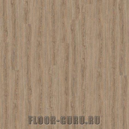 Wineo 800 Wood XL Clay Calm Oak Click